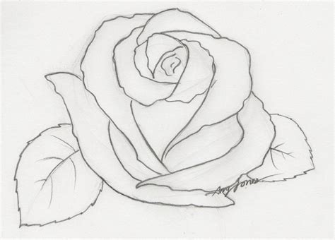 easy sketches easy flower sketches in pencil our healthy tips