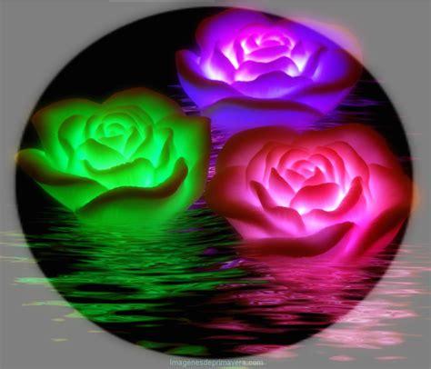 imagenes de flores virtuales flores virtuales para regalar im 225 genes de primavera