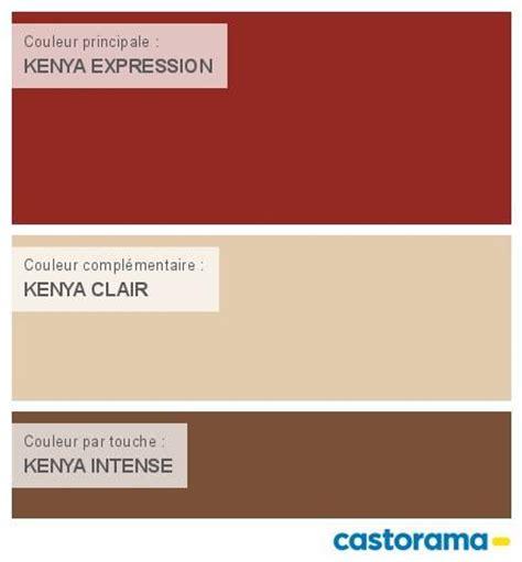 castorama nuancier peinture mon harmonie peinture kenya expression satin de dulux