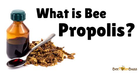 What is Bee Propolis Royal Jelly Benefits