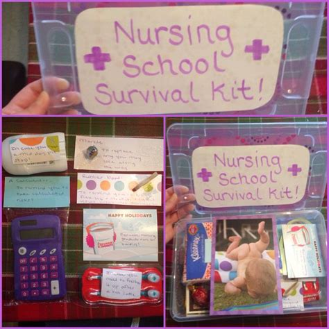 vet school survival guide notes from a back row student books 1000 ideas about survival kit on