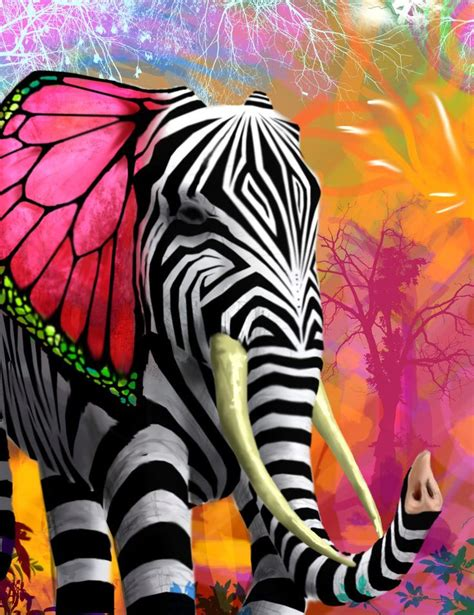 colorful zebra colorful zebra striped elephant with butterfly wing ears