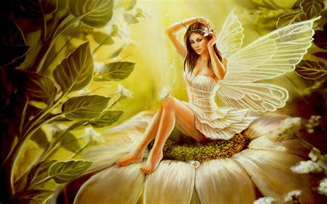 wallpaper flower fairy flower fairy full hd wallpaper and background 1920x1200