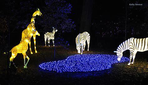 cincinnati zoo festival of lights pnc festival of lights cincinnati zoo botanical garden 174