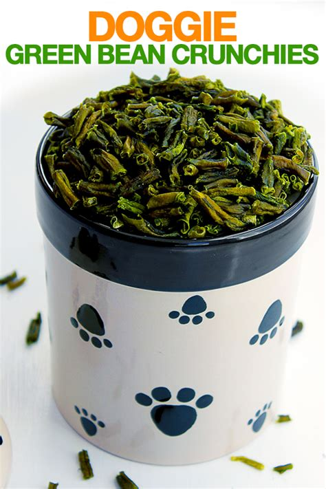 are green beans bad for dogs treats for st s day