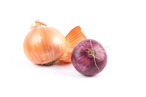 Onion Hu Images Reverse Search | onion hu images reverse search