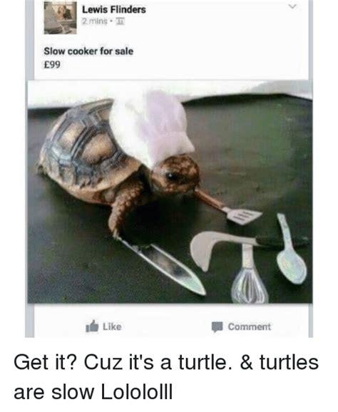 Funny Turtle Memes - 25 best memes about turtle meme turtle memes