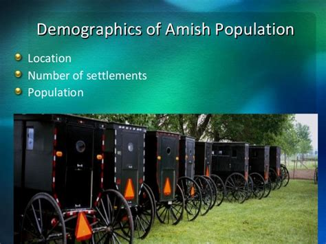 amish culture beliefs and lifestyle about travel cultural competence in healthcare amish culture