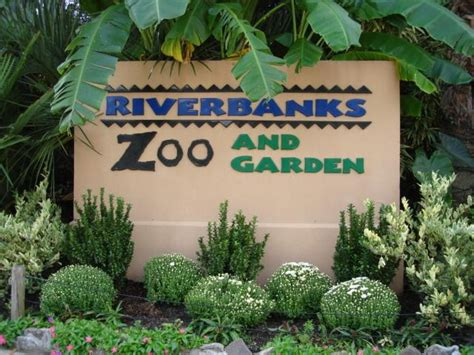 Spartanburg Zoo To Erect New Fencing For Increased Riverbank Zoo Lights