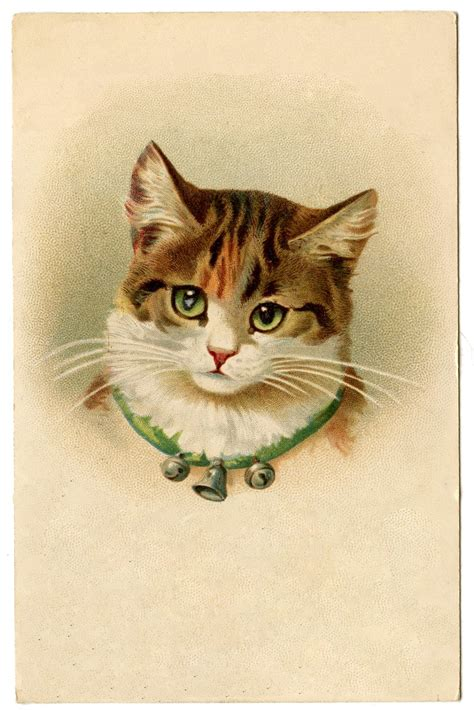 cat wallpaper graphic vintage image cat graphicsfairy21 the graphics fairy