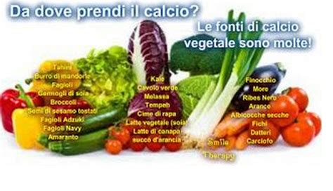 calcio e alimenti 187 quali alimenti contengono calcio