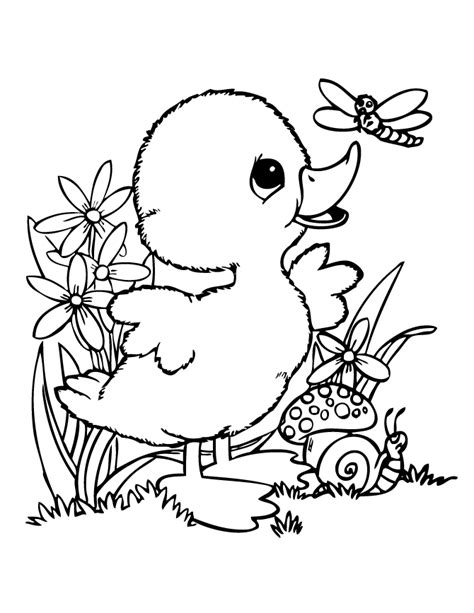 baby duck and friends coloring page h m coloring pages