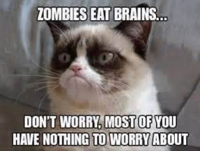 Funny grumpy cat pictures with words wesharepics