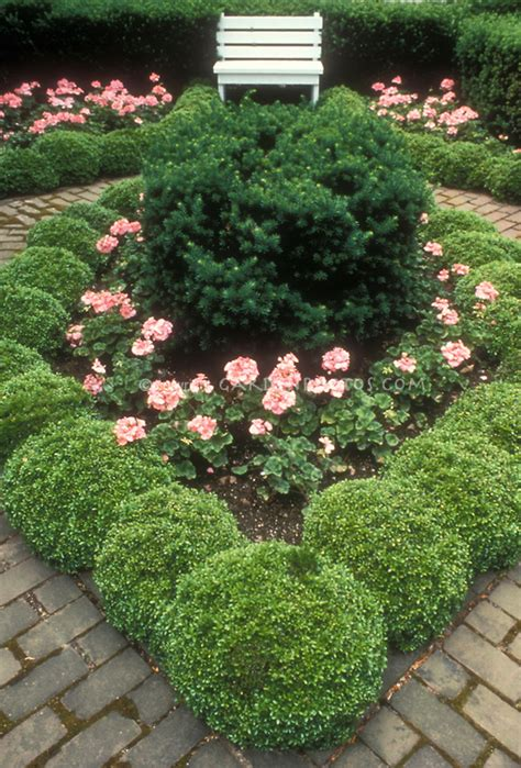 boxwood garden in tiny setting with bench plant flower