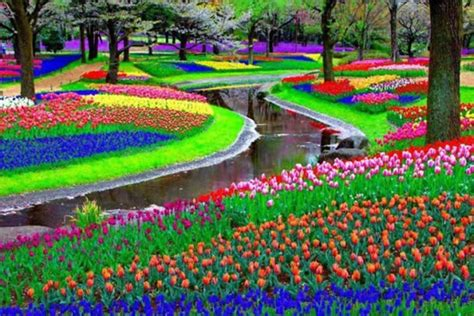 World Largest Flower Garden Keukenhof The Largest Flower Garden In The World