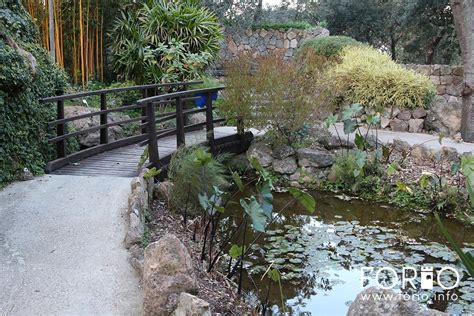 giardino la mortella giardini la mortella forio info