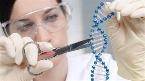 Genetic Engineering the protein that can cut dna and revolutionize