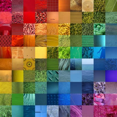 what do different colours insect color vision compound a moment of science