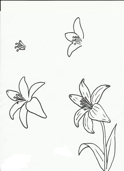 how to draw flower doodle class ideas flowers flowers flowers