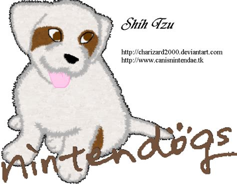 nintendogs shih tzu nintendogs dachshund and by charizard2000 on deviantart