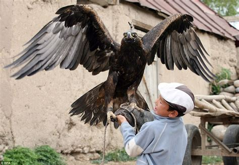 images of the golden eagle hunters