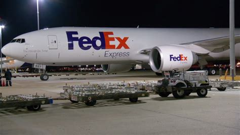 Fedex Criminal Background Check Fedex Express Subsidiary Of Based Fedex Corp To Fill 800 At