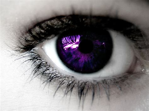 purple eye color which is your favourite eye color on the opposite sex