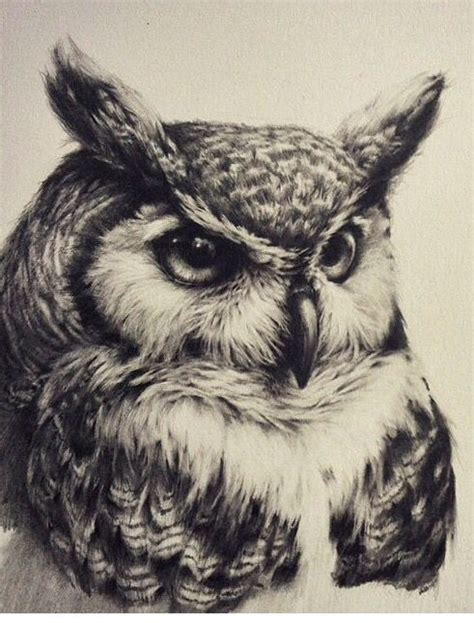 black and white owl tattoo designs realistic severe black and white owl design