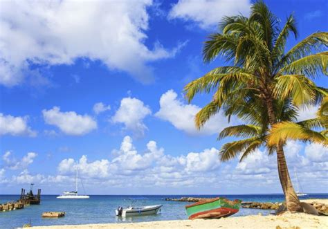 el mar dels tradors 8499308643 vacaciones en el mar sentidos cinco d 237 as