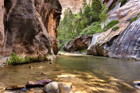 wallpaper river water rocks trees wallpaper zion narrows rocks small river trees