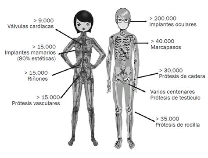 llevar cadenas en ingles cuerpo humano ciencia para llevar