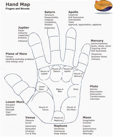 divination palmistry analyzing the mounts palmistry mounts hugh fox iii