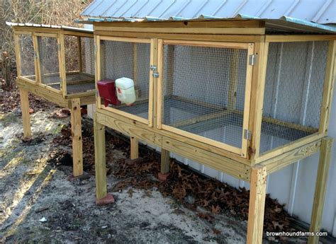 how to catch a rabbit in your backyard 1000 ideas about rabbit hutches on pinterest rabbits rabbit cages and indoor rabbit