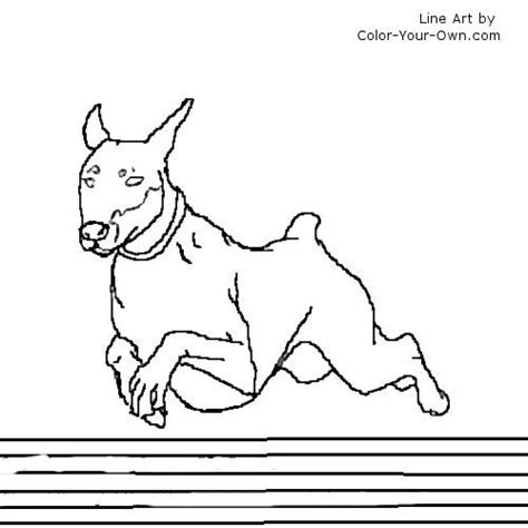 Doberman Coloring Pages Doverman Free Coloring Pages by Doberman Coloring Pages