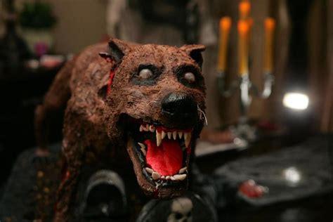 zombie dog tutorial halloween zombie dog cake cakecentral com