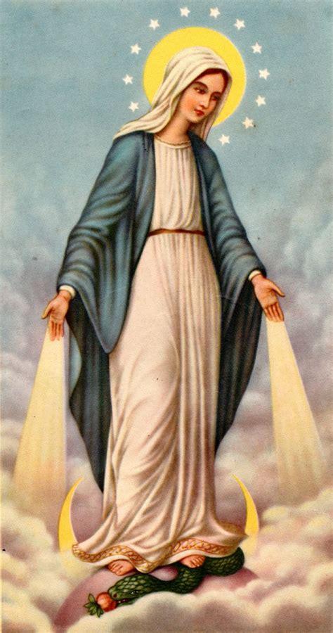 imagenes virgen maría inmaculada inmaculada concepcion de maria bajo su mirada han crecido