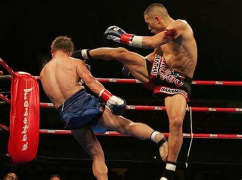 aprender muay thai en casa fraces combate kick boxing muay thai taringa