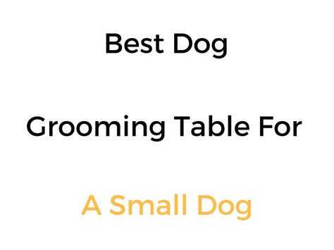 grooming tables for small dogs best grooming table for small dogs reviews buyer s