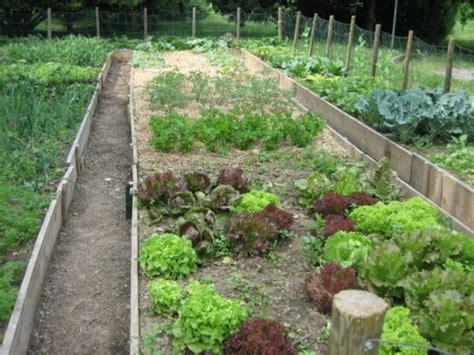 orto e giardino biologico sabbio chiese come coltivare l orto