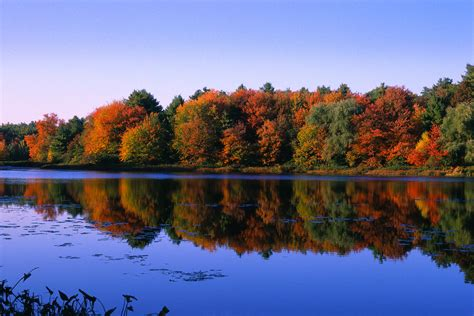 How Can Walden Mba Help M by Autumn Trees At Walden Pond Grewal Levy Marketing News