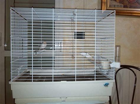 gabbie per cocorite gabbia per cocoriti cocorite e pappagallini ondulati