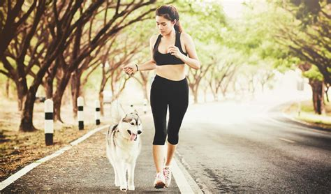 9 tips for running with 9 tips for running with dogs top tips