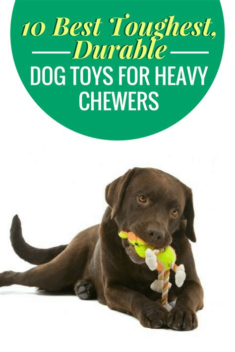 toys for heavy chewers soft toys for aggressive chewers wow