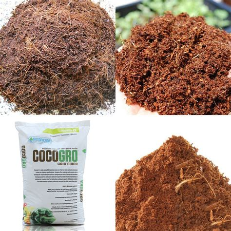coco tomatoes review coco coir as a potting medium to grow tomato seeds