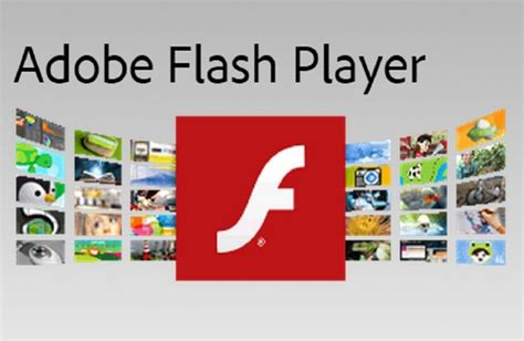 adobe flash player for mac the real risk the adobe flash player for mac is