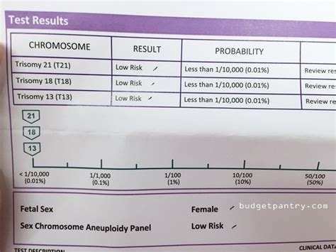 harmony test pregnancy the second trimester harmony test and gender