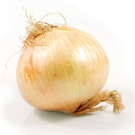 side effects of onions search engine at