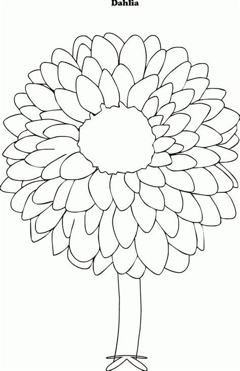 mewarnai gambar bunga dahlia contoh anak paud
