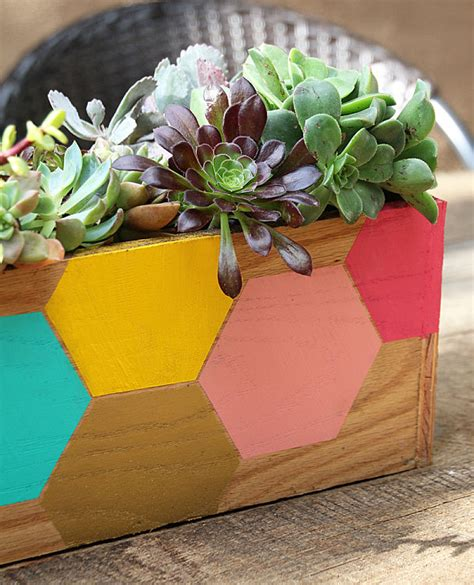 Creative Succulent Planter Ideas Succulent Planter Ideas