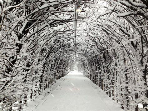staten island botanical garden places to go on date in nyc winter nyc parks